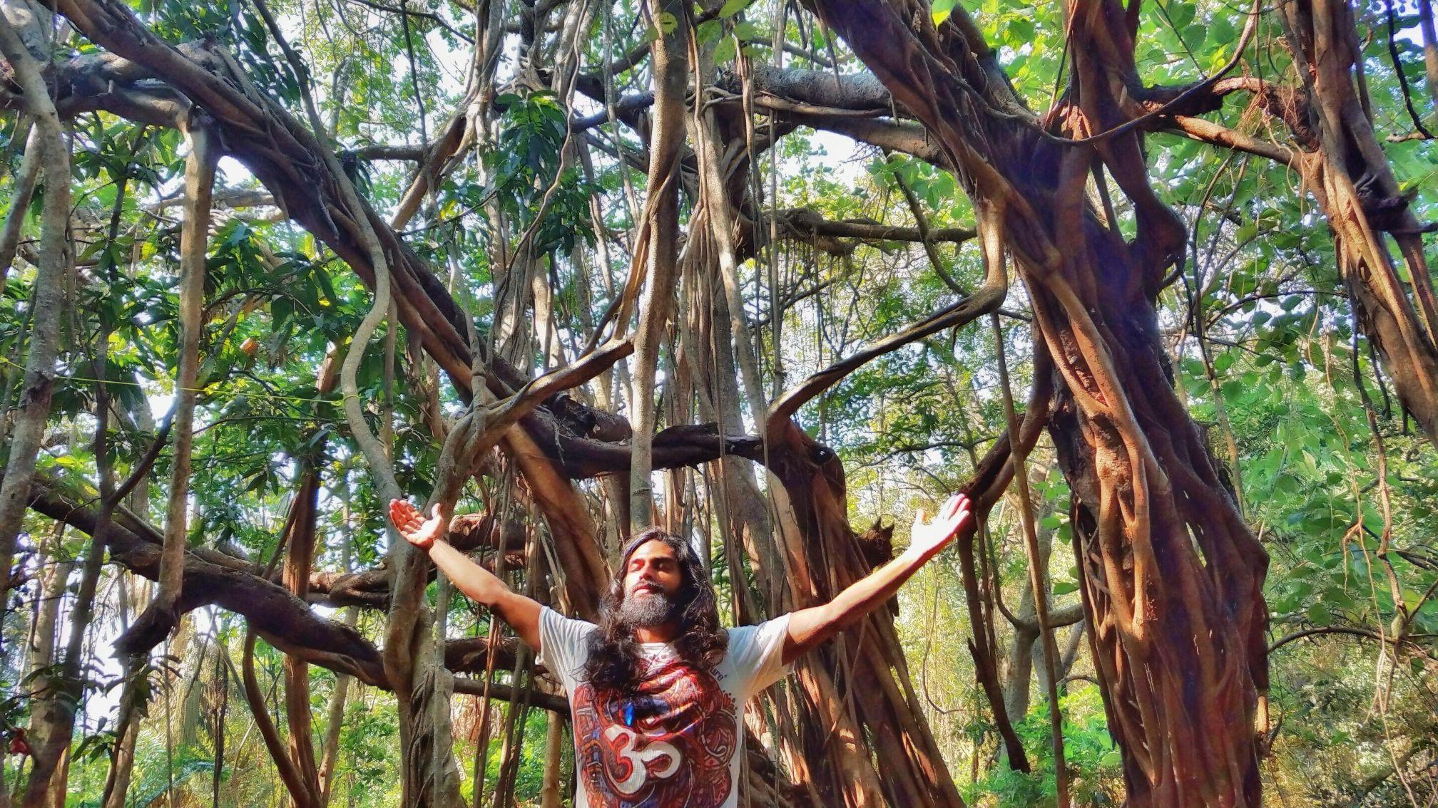 bhavnath_forest_meditation